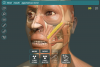 Visual Anatomy 3D - Human
